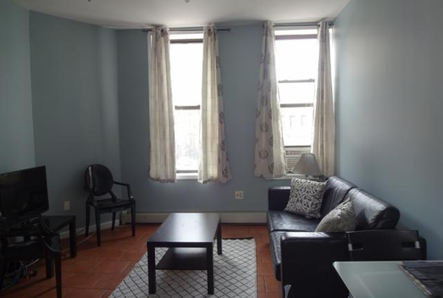 Two Bedroom Brooklyn Apartment photo 53636