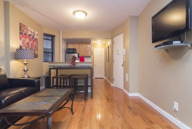 Fantastic 1 Bedroom Apartment in Greenwich Village photo 51565