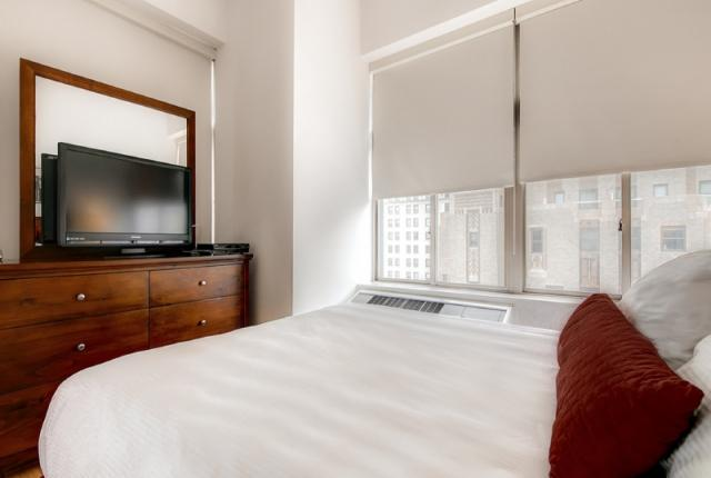 I Bedroom Apartment in the Financial District photo 52751