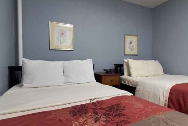 Amazing 2 Bedroom Flat in Midtown East photo 50992